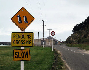 Дорожный знак в Оамару, Южный остров, Новая Зеландия